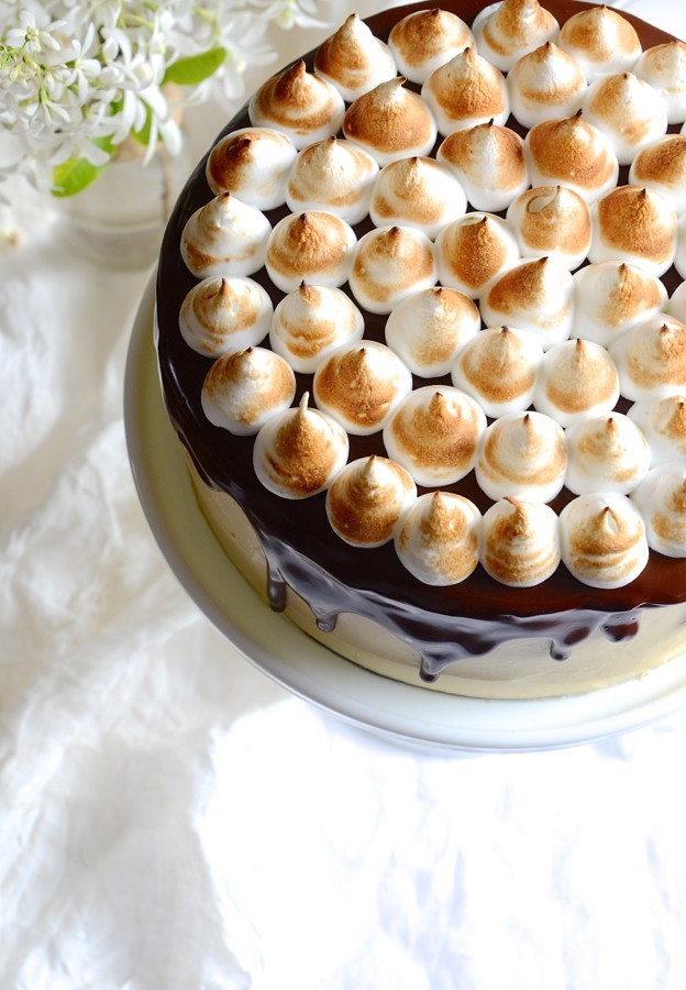 S'mores Chocolate cake | Bibby's Kitchen Cake Friday recipes